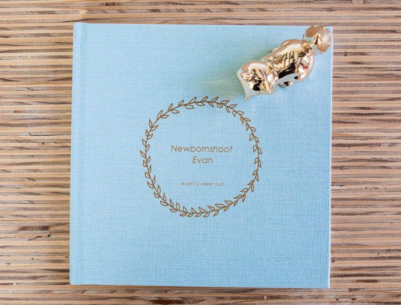 album, newbornshoot, Hardenberg, Overijssel